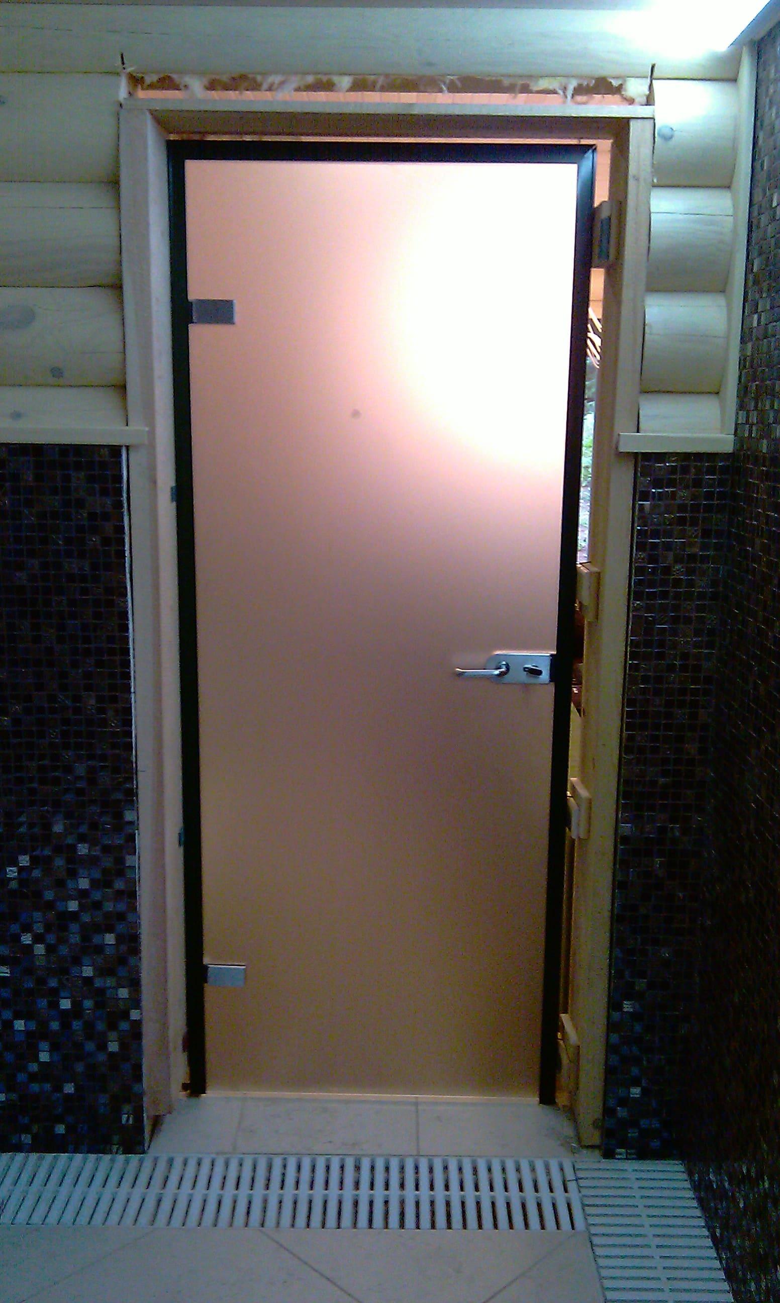 Стеклянная дверь 17