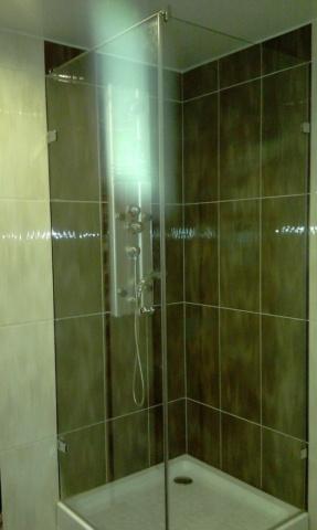 Стеклянная дверь для душа 20